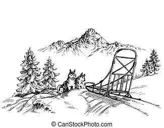 paesaggio montagna, inverno, rauco, cani, sledding
