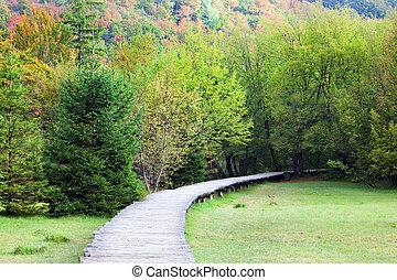 paesaggio, natura