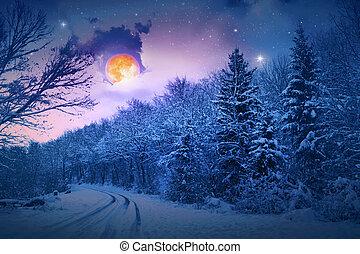paesaggio, neve, sera, alberi., inverno, fondo., abete, coperto