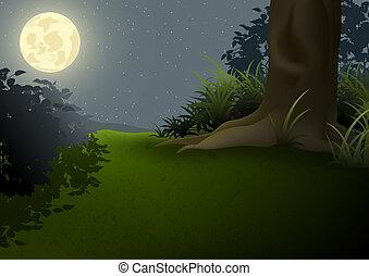 paesaggio, notte