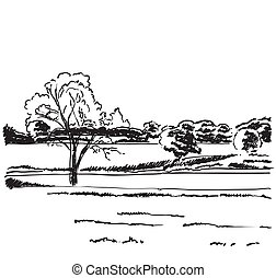 paesaggio., schizzo, campi, mano, scarabocchiare, disegnato