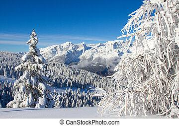 paganella, ski