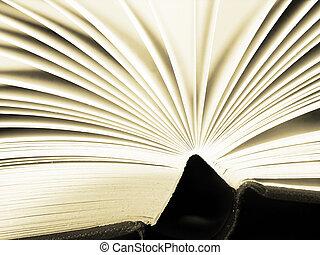 pagine, di, uno, libro