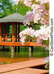 pagoda, wroclaw, polonia, japonés