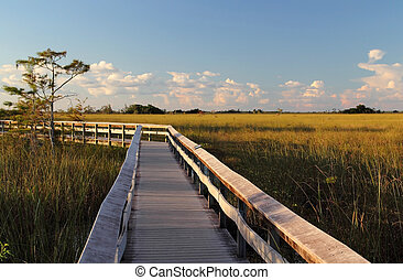 Pahayokee Boardwalk in late afternoon, Everglades National...
