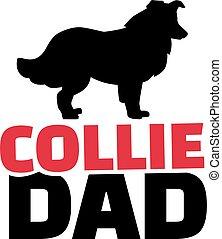 pai, collie, silueta, cão