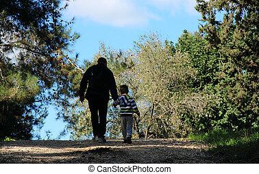 pai filho, andar, em, primavera, floresta