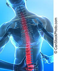 Man with pain in spine part - x-ray view with selected botom part