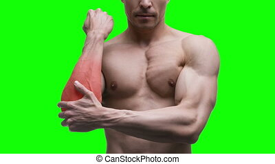 Pain in the elbow, muscular male body on green background,...