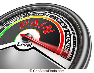 pain level conceptual meter indicate maximum, isolated on...