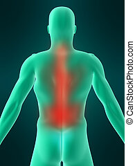painful back - 3d rendered illustration of a human body...