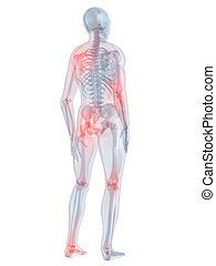 painful joints - 3d rendered illustration of a human ...