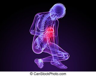 3d rendered illustration of a female skeleton with highlighted knee