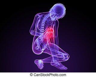 painful knee - 3d rendered illustration of a female skeleton...