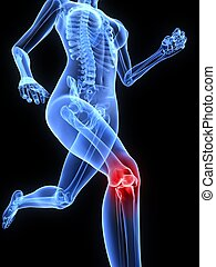 painful knee - 3d rendered illustration of a running ...