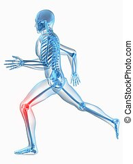 painful knee - 3d rendered illustration of a running...