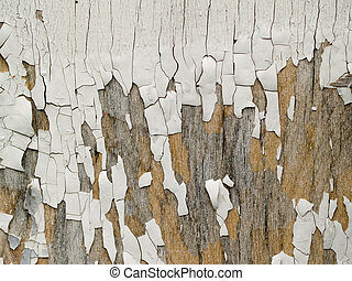 Paint - old cracked white paint for the background
