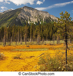Paint Pots - Kootenay National Park - Canada