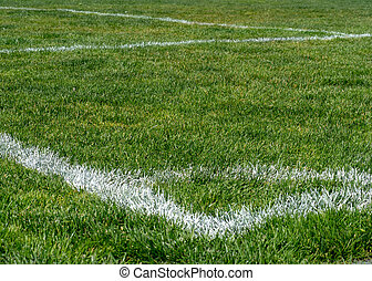 Painted corner of a soccer field on natural grass