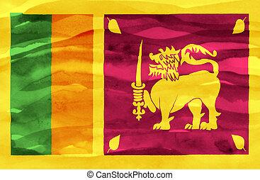 Painted flag of Sri Lanka