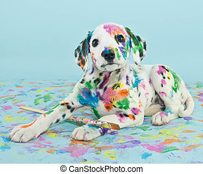 A silly little Dalmatian puppy that looks like he got into the art supplies, on a blue background.