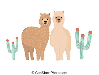 Pair of cute llamas isolated on white background. Couple of...