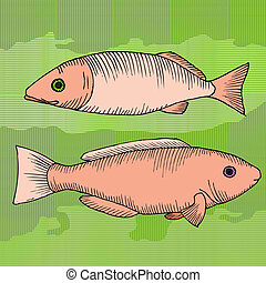 pair of fish on pattern background