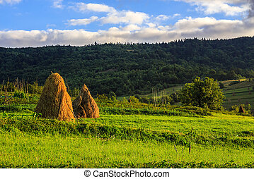 pair of haystacks and treeat the foot of mountain - a pair...
