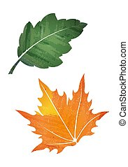Pair of leaves abstract vector illustration in watercolor style.