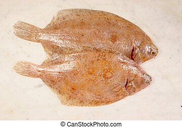 Pair of lemon sole - Two lemon sole on marble slab