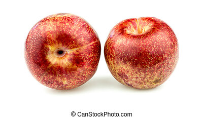 Pair of pluot apricot plums