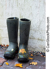 pair of rubber boots with autumn leaves