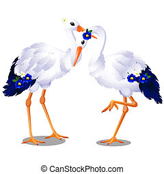 Pair of storks isolated on white background. Vector cartoon close-up illustration.