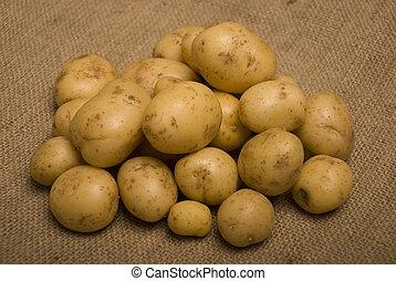 pair, pommes terre, m, sac