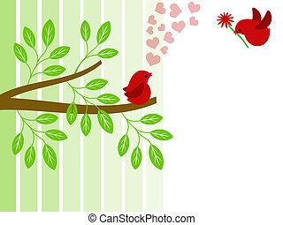 paire, valentines, amour, jour, oiseaux