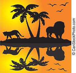 paisagem, africano