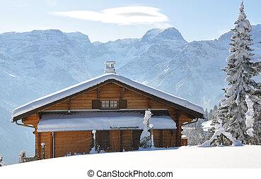 paisagem, alpino