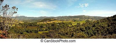 paisagem, colômbia, andino