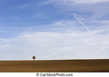 paisagem, com, árvore