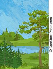 paisagem, com, árvores, e, lago