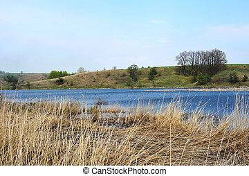 paisagem, com, árvores, e, lago, ou, rural, paisagem