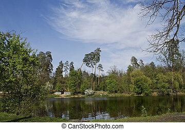 paisagem, com, lago, árvores, e, céu