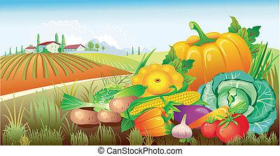 paisagem, com, um, grupo, de, legumes