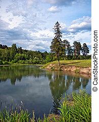 paisagem, com, um, lago