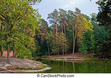 paisagem, com, um, lagoa