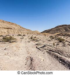 paisagem, de, a, deserto, em, israel
