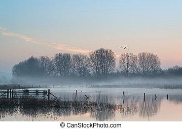 paisagem, de, lago, em, névoa, com, sol, brilho, em, amanhecer