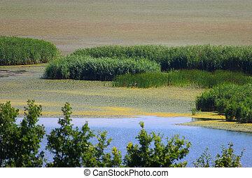 paisagem, de, lago, tisza