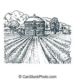 paisagem., esboço, hills., campos, vila, mediterrâneo, ilustração, mão, vetorial, desenhado, vineyard., família
