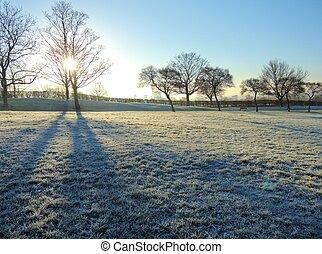 paisagem., gelado, inverno